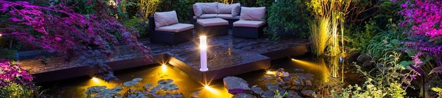 Votre jardin en pleine lumière
